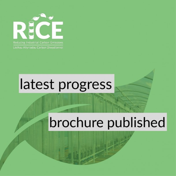 Latest Progress brochure